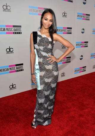 2013 American Music Awards - Red Carpet