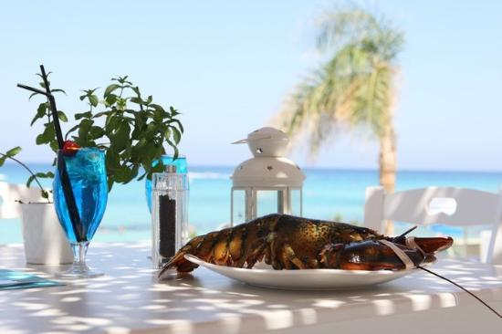 kohili-seafood-stories