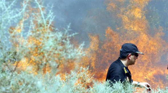 Φωτιά ξέσπασε πριν από λίγο στη Λουμπάρδα Κορωπίου, όπως μετέδωσε ο ΑΝΤ1.