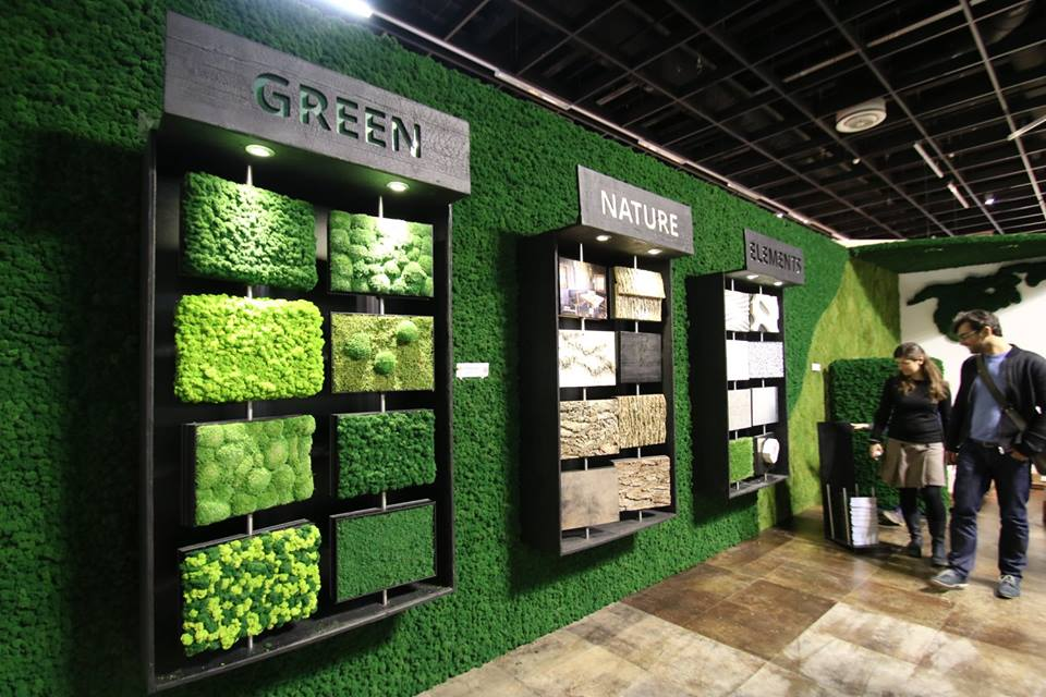 Freund-uses-real-mosses-and-plants-for-our-green-wall-elements