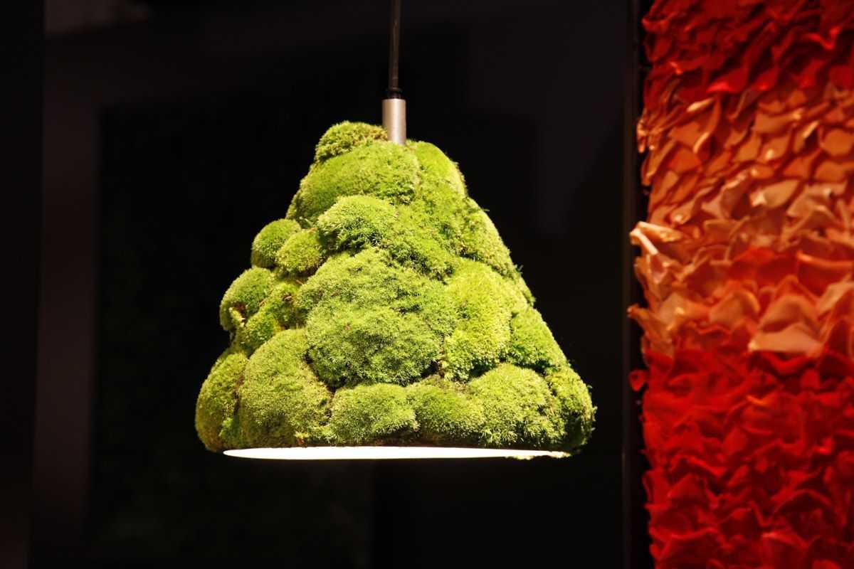Rosemarie-Schuls-Moss-lamp